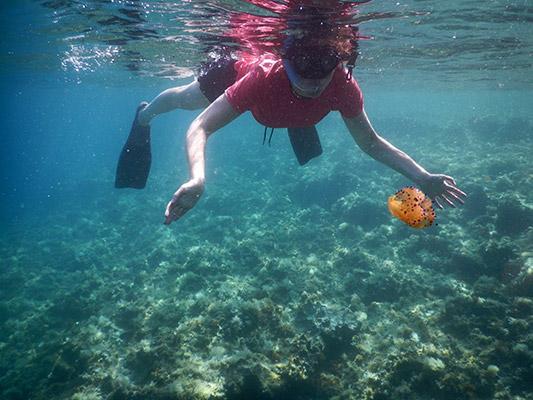snorkeling-4